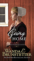 Going Home cover Books