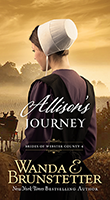 Allisons Journey Cover Books