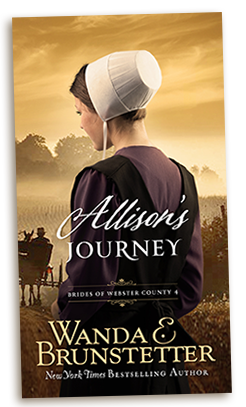 Allison's Journey - Wanda Brunstetter