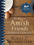 amish friends Books
