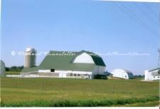 Amish Barn 3