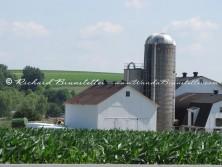 Amish Barn 4