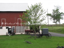 Amish barn with buggies