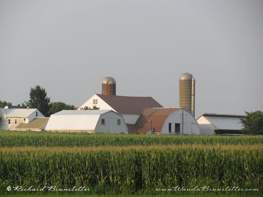 Amish Farm 1024 X 768
