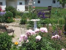Amish flower garden 6
