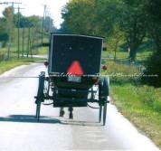 Indiana Amish Buggy