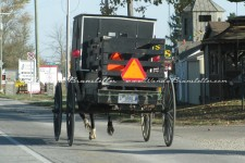 Market buggy