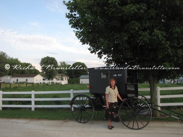 Meet Wanda beside a buggy
