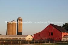 Illinois Barn 1