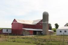 Ohio Amish Barn 2