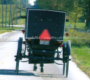 Back of Indiana Amish Buggy 300x267 Simple Living Tips