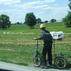 amishfacts1 boyscooter Amish Facts
