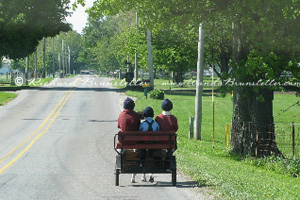 Children in Pony cart